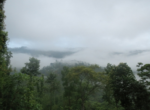 Darjeeling_2ndMS_Special05