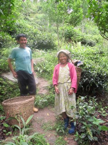 Darjeeling_2ndMS_Special07