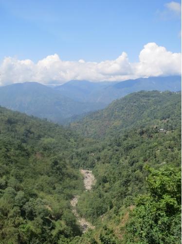 Darjeeling_2ndMS_Special14