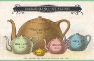 darjeeling_first_508x320