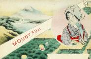 Fuji Sencha